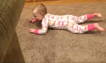 Μωρά και σκύλοι σε ένα βίντεο. Μπορείτε να φανταστείτε τι θα δείτε; (vds)