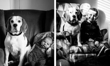 Μπαμπάς φωτογραφίζει το γιο του παρέα με τον σκύλο του στην ίδια θέση για 3 χρόνια