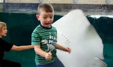 Δείτε πώς αντιδρούν τα παιδιά όταν επισκέπτονται ενυδρείο (video)