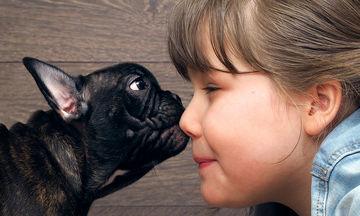 Πώς μπορείτε να σώσετε ένα ζώο από φόλα