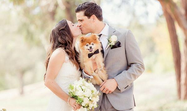 Ζευγάρια δεν αποχωρίζονται τα αγαπημένα τους κατοικίδια ούτε στο γάμο τους ( pics)