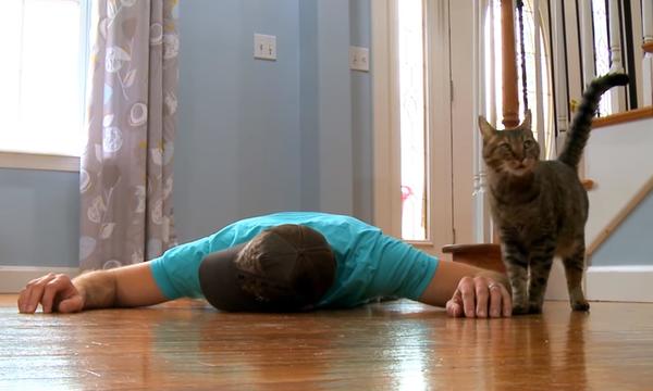 Προσποιείται ότι πεθαίνει μπροστά στη γάτα του. Η αντίδρασή της είναι ανεκτίμητης αξίας (video)