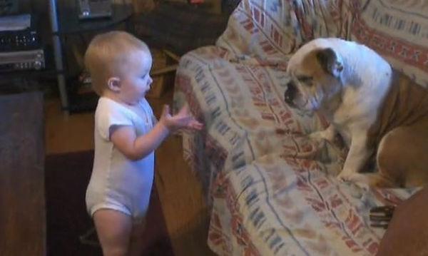 Μωράκι σε ξεκαρδιστική κουβέντα με τον σκύλο του - Η αντίδραση του σκύλου στο τέλος; Ανεκτίμητη