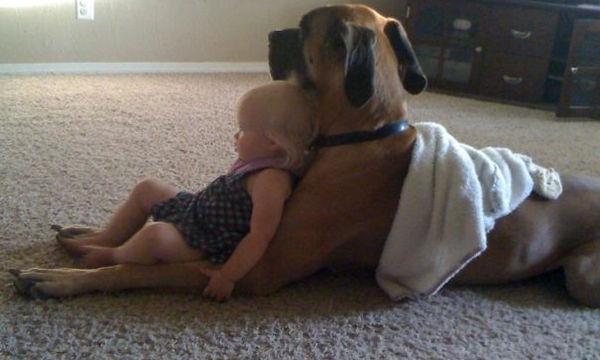 Αν πιστεύετε ότι τα παιδιά σας δεν χρειάζονται ένα σκύλο, με αυτές τις φωτογραφίες θα αναθεωρήσετε