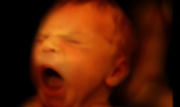 Πότε το έμβρυο αρχίζει να γεύεται;