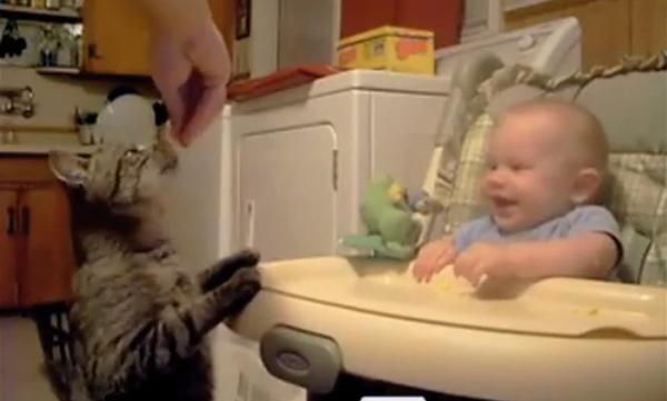 Δείτε τι είναι αυτό που κάνει το μωρό να ξεκαρδίζεται στα γέλια (vid)