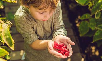 Μπορεί ένα παιδί να είναι χορτοφάγος;