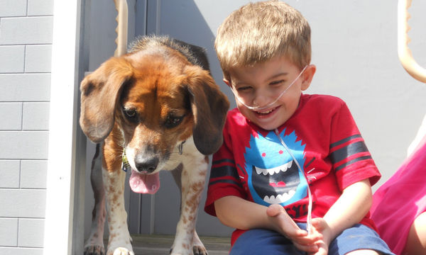 Παιδιά με αναπηρία: Πώς οι σκύλοι-βοηθοί μπορούν να αλλάξουν τη ζωή τους