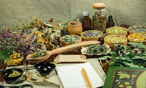Αυτά τα βότανα θα σας βοηθήσουν στην απώλεια βάρους