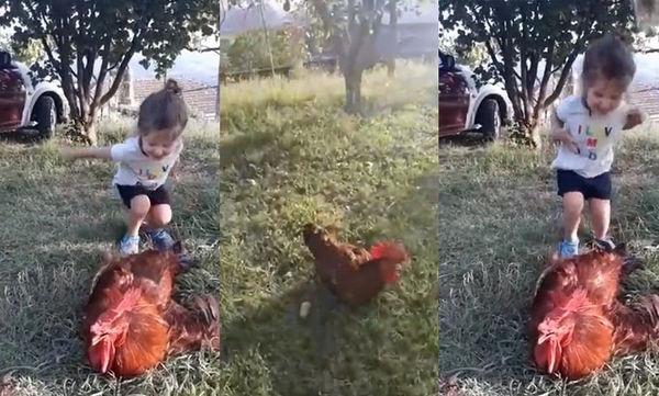 Όταν τα παιδιά βλέπουν πρώτη φορά μια κότα... αυτή είναι η αντίδρασή τους! (vid)