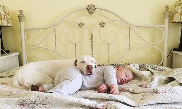 Η σχέση αυτού του μωρού με την σκυλίτσα του είναι μοναδική (pics)