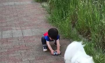 Δεν το βάζει κάτω: Δείτε το αγοράκι πόσο προσπαθεί για να πιάσει το λουρί του σκύλου (vid)