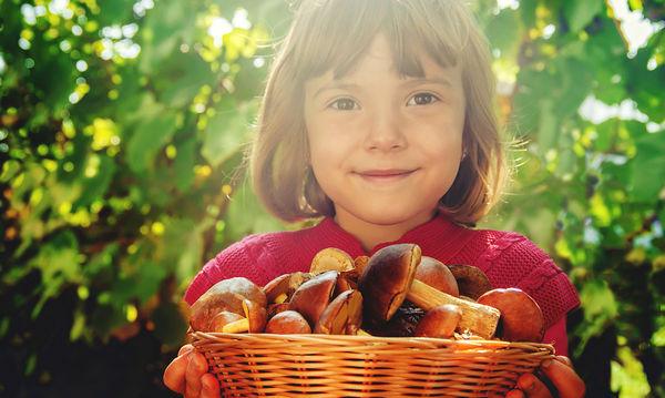 Πότε ένα παιδί μπορεί να φάει μανιτάρια;