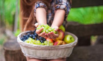 Πώς θα μάθουν τα παιδιά να τρέφονται σωστά; Μα φυσικά από «το ΑΒητάρι της ισορροπημένης διατροφής»