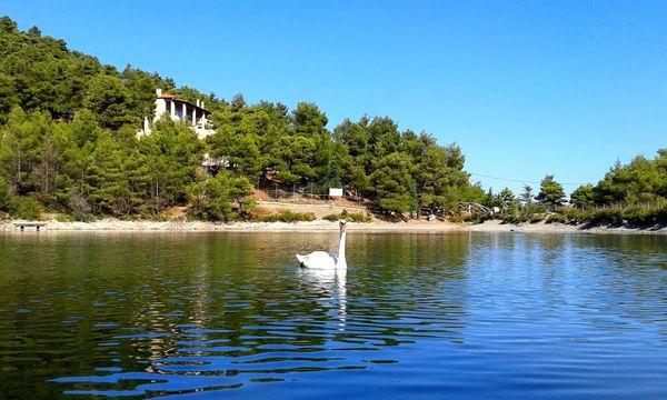 Λίμνη Μπελέτσι: Μια όμορφη και κοντινή απόδραση για όλη την οικογένεια