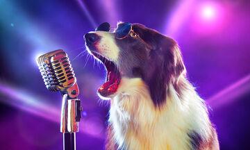 Σκύλος τραγουδάει όπερα! (vid)