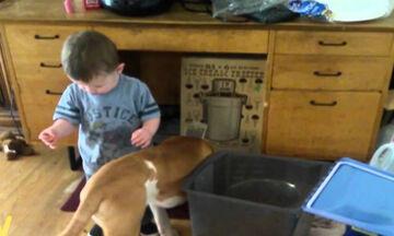 Προσπαθεί να ταΐσει το σκύλο του όμως έχει ένα ατύχημα (vid)