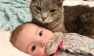 Δείτε τι συμβαίνει όταν τα μωρά παίζουν με τις γάτες (vid)