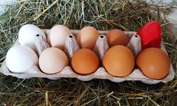 Έρχεται Πάσχα, τι να προσέξετε όταν αγοράζετε αυγά