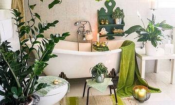 Φέρτε την άνοιξη στο μπάνιο σας: Εντυπωσιακές διακοσμητικές ιδέες με φυτά (vid)