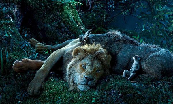 «Ο Βασιλιάς των Λιονταριών» - Γιατί πρέπει να δείτε την ταινία με τα παιδιά σας (pics&vid)